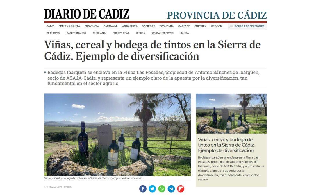 Viñas, cereal y bodega de tintos en la Sierra de Cádiz. Ejemplo de diversificación